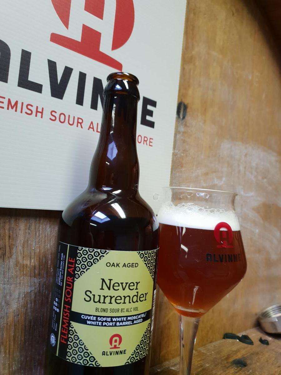 Alvinne - Never Surrender